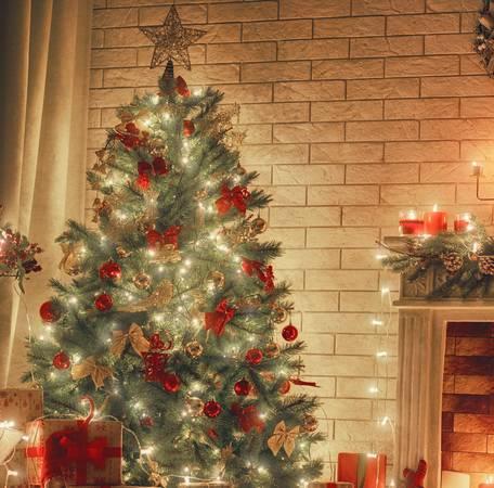 Weihnachtsbaumbelechtung