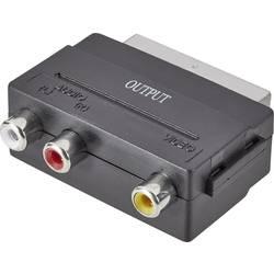 SCART / cinch adaptér SpeaKa Professional SP-1300844, čierna