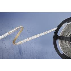 LED pásek Barthelme Basic 51540128 51540128, 24 V/DC, teplá bílá, 500 cm