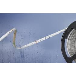LED pásek Barthelme Basic 51540328 51540328, 24 V/DC, teplá bílá, 500 cm