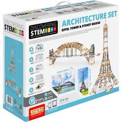 STEM55