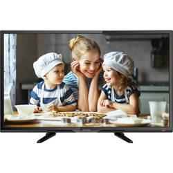 LED TV 60 cm 23.6 palec Dyon Enter 24 Pro X en.třída A+ (A+++ - D) DVB-T2, DVB-C, DVB-S, HD ready, CI+ černá