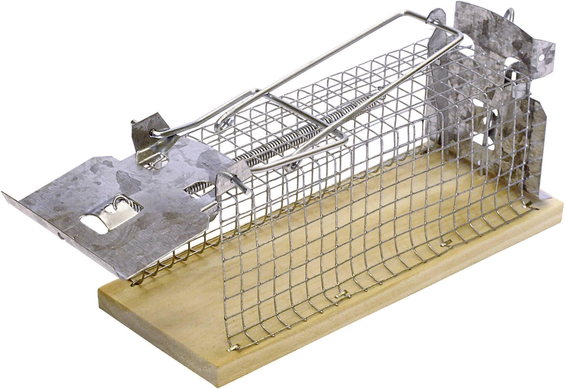Klecová past na myši Swissinno Classic, 1 584 001