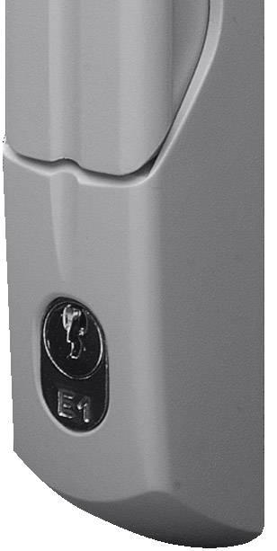 Pohodlný úchyt pro nošení Rittal TS 8611.045, s bezpečnostní válcovou vložkou šedá (RAL 7035), 1 ks