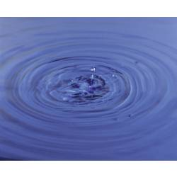 Testovacie prúžky k stanoveniu obsahu dusičnanov