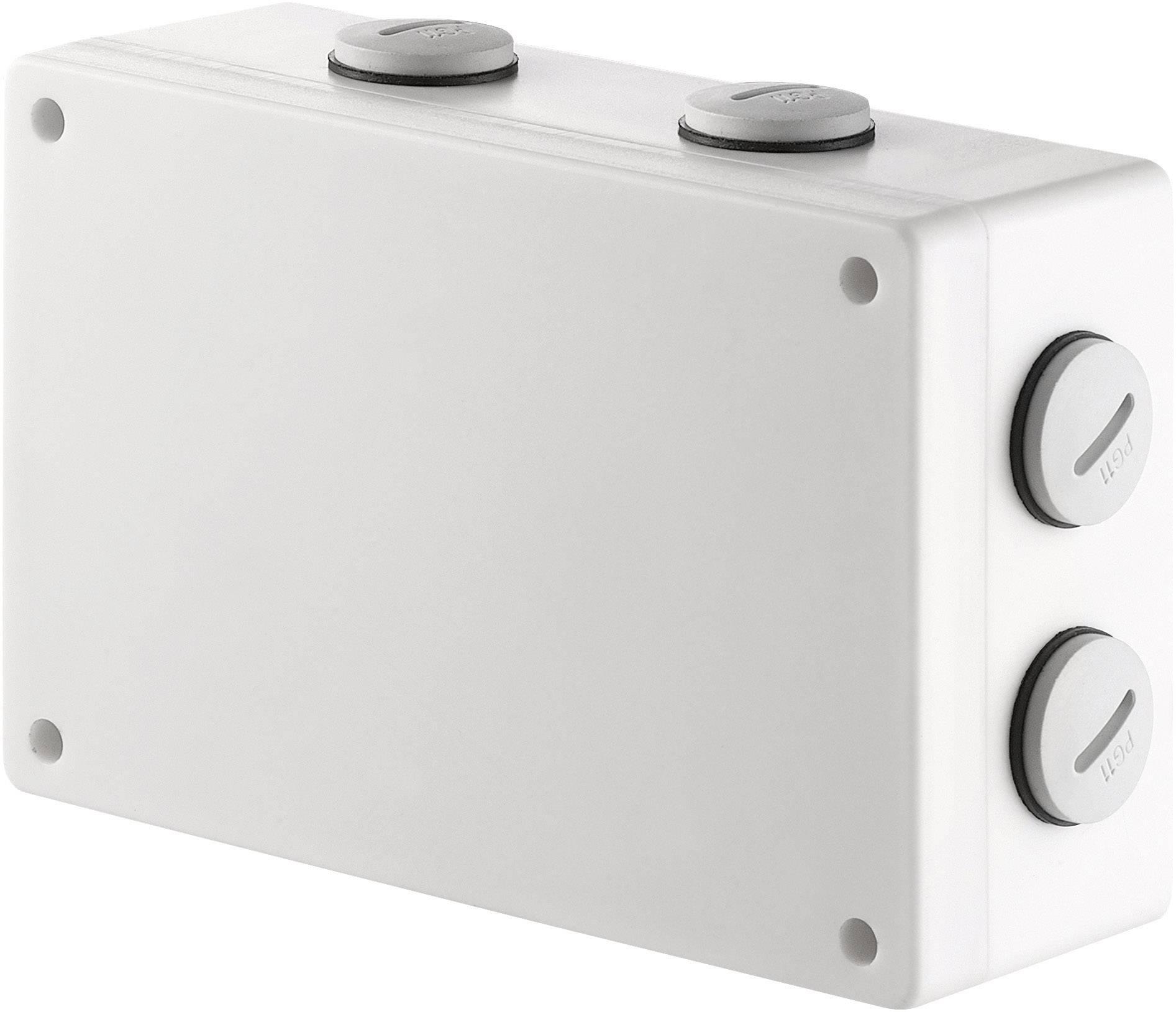 Vonkajší bezdrôtový spínač RSL, 2kanál, IP66, max. 2000 W