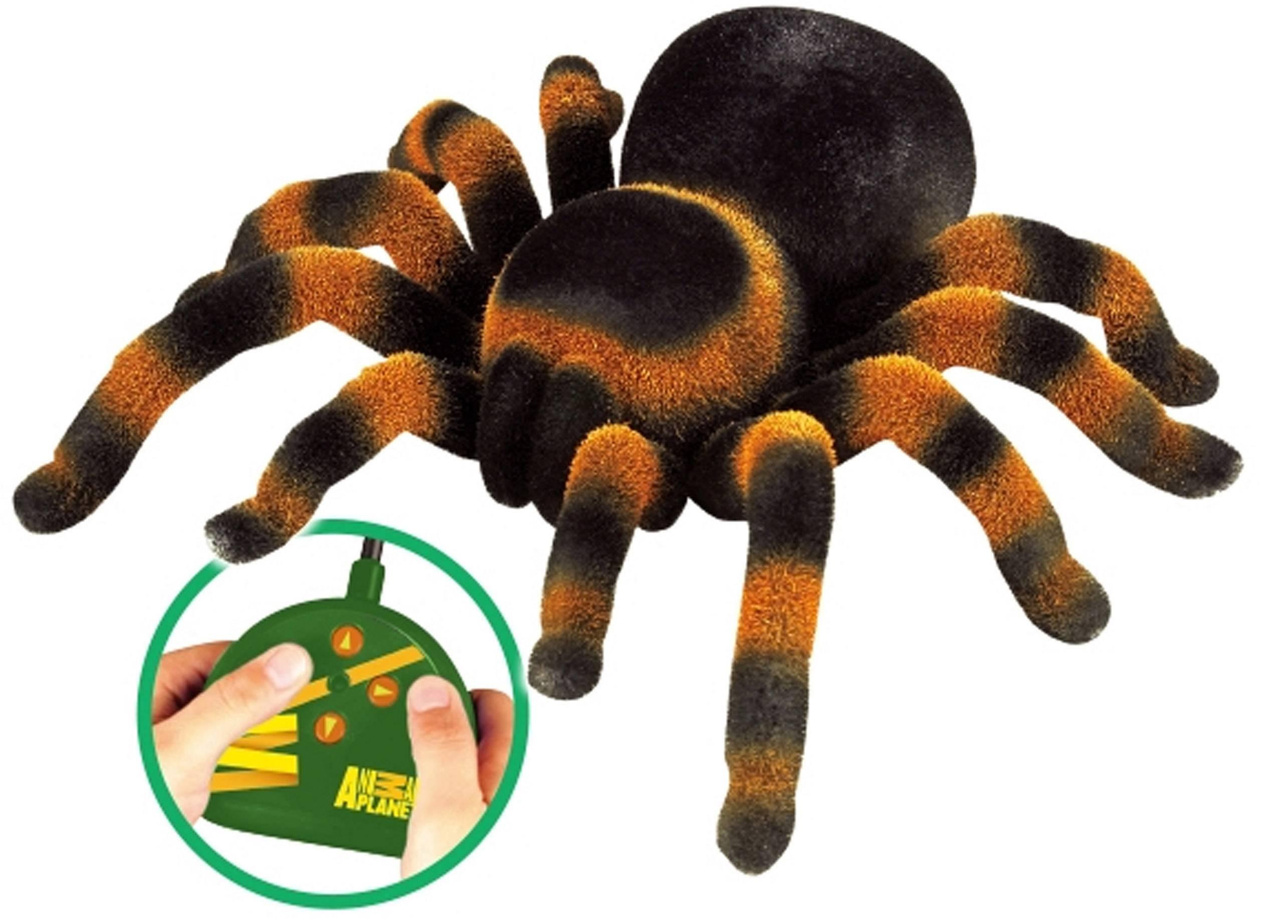 RC model pavúka - tarantula Spindel 1081982