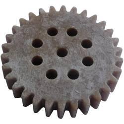 Modul 1 s ozubeným kolem ze dřeva/plastu