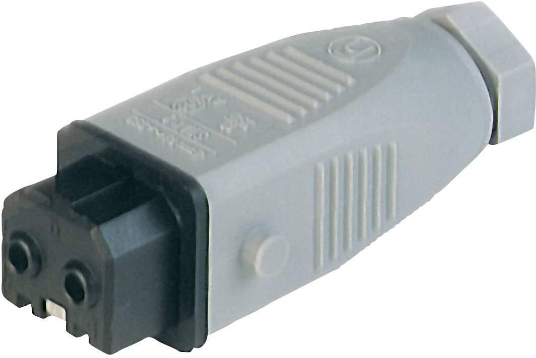 Sieťový konektor Hirschmann STAK 2, zásuvka, rovná, počet kontaktov: 2 + PE, 16 A, 250 V, sivá, 1 ks