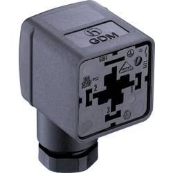 Ventilová zástrčka GDM2106 Belden 934888100 GDM2106, počet pólů:2 + PE, černá, 1 ks