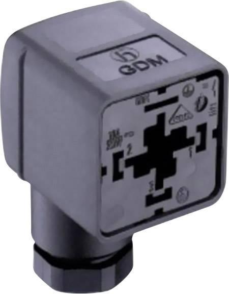 Ventilová zástrčka GDM21FA-V44 Belden 934888075 GDM21FA-V44, počet pólů:2 + PE, transparentní, 1 ks