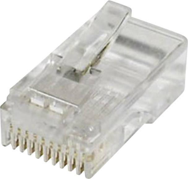 RJ48 zástrčka, rovná econ connect MPL10/10, číra, 1 ks
