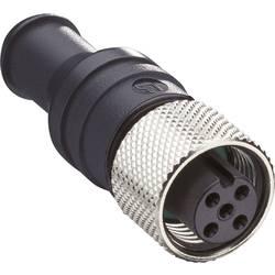 Datový zástrčkový konektor pro senzory - aktory Belden 0939 CTX 102 10985 zásuvka, rovná, 1 ks
