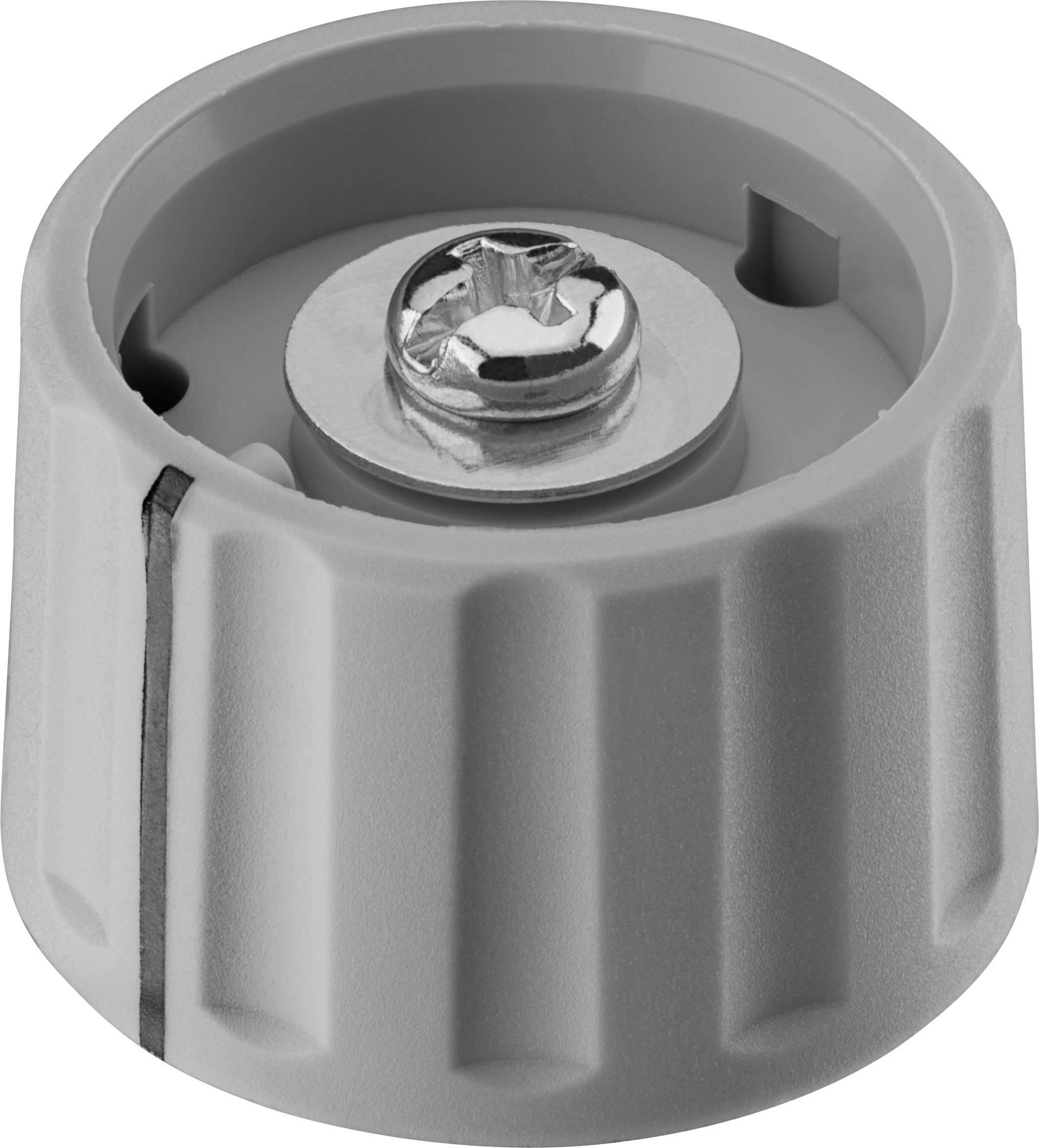 Otočný knoflík Ritel 27 28 60 1, (Ø x v) 28 mm x 18.2 mm, šedá, 1 ks