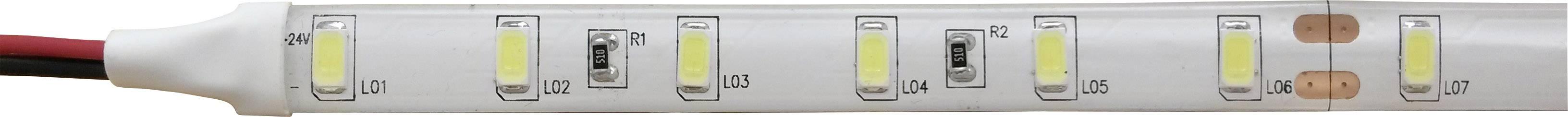 LED pásek Barthelme 51511434 51511434, 24 V, 16 wpm, bílá, 500 cm