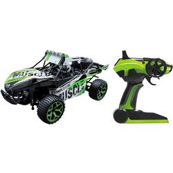 RC model auta Buggy Amewi Extreme D5 22211, 1:18
