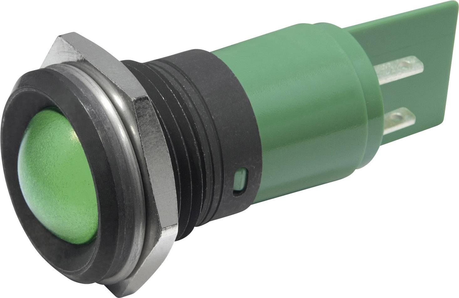 LED signálka CML, IP67, 22 mm, 230 V/AC, modrá