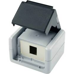 Síťová zásuvka na omítku nevybavený specifikací Telegärtner H02000A0069, 1 port, šedá