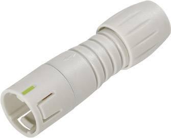 Kabelová zástrčka Subminiaturní kulatý konektor zástrčka, rovná Binder 99 9225 400 08 IP67, PA (UL 94 V-0), pólů 8, 1 ks