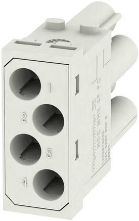 RockStar® Modu Plug Weidmüller HDC MBUS 2 MC, 1 ks