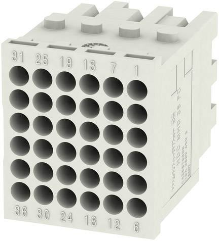 RockStar® Modu Plug Weidmüller HDC MHD 36 FC, 1 ks