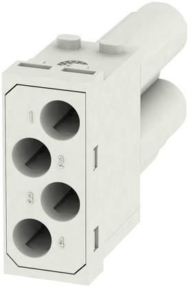 RockStar® Modu Plug, rám Weidmüller HDC MF 10B AC, 1 ks
