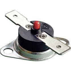Bimetalový spínač Thermorex TK32-T01-MG01-Ö100- MR, pro otevření 100 °C, 250 V, 16 A, 1 ks