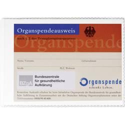 Durable pouzdro na doklady, oochranné pouzdro 2134 fólie 105 x 74 mm (š x v) transparentní 213419 1 ks