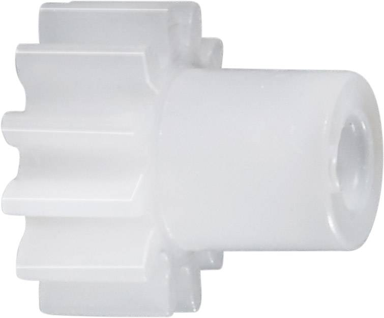 Čelní ozubené kolo Modelcraft, 25 zubů, M0.5, polyacetal