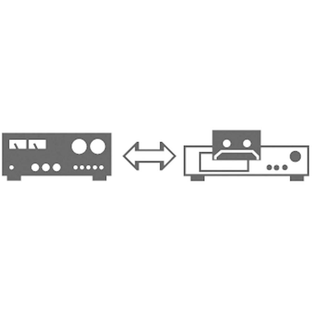 Konektor DIN audio kabel SpeaKa Professional SP-1300292, 1