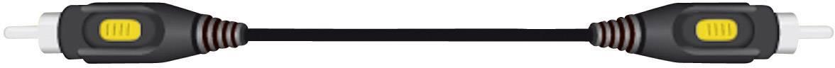 Cinch kabel, SpeaKa Professional 50156, černá, 2 m