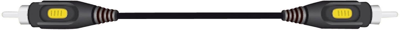 Cinch kabel, SpeaKa Professional 50117, černá, 10 m