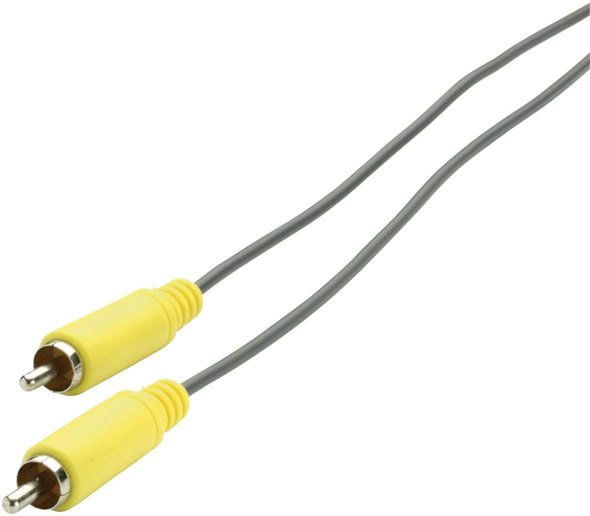 Prepojovací audio kábel SpeaKa Professional, cinch zástrčka ⇔ cinch zástrčka, žltá / sivá, 3 m