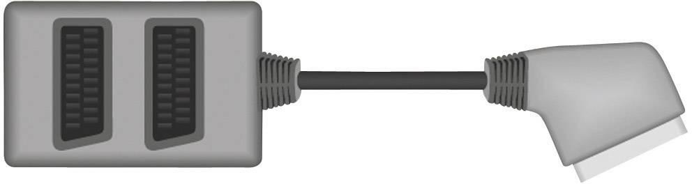 SCART TV, monitor Y adaptér SpeaKa Professional SP-1300812, 0.20 m, čierna