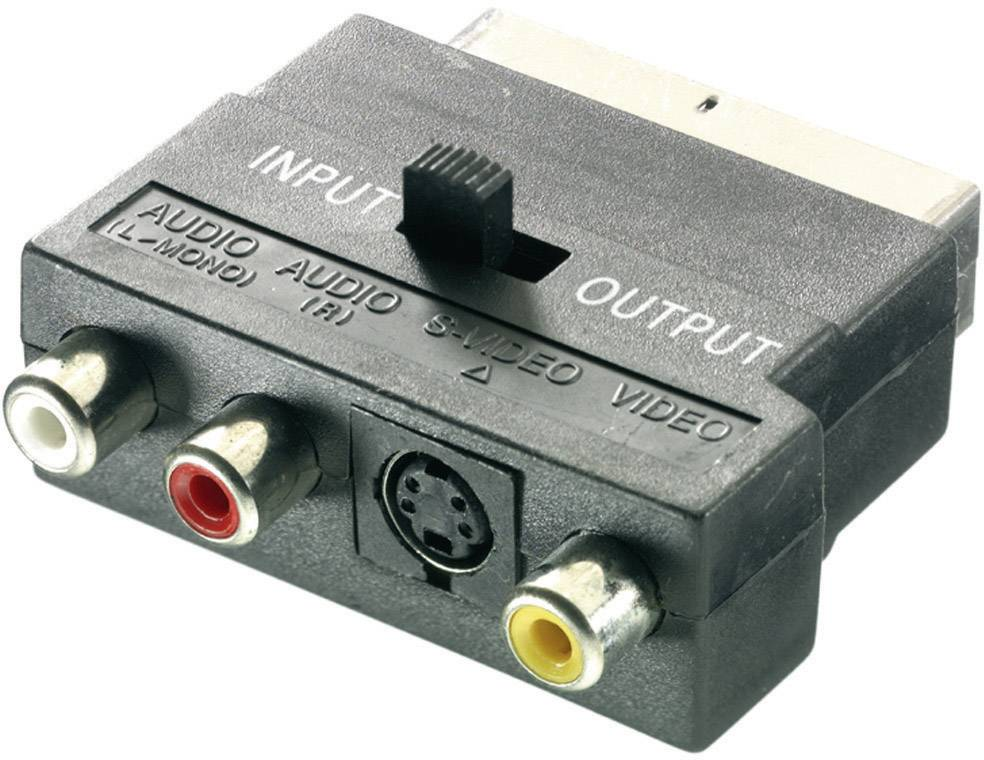 SCART / cinch / S-Video adaptér SpeaKa Professional SP-1300828, čierna