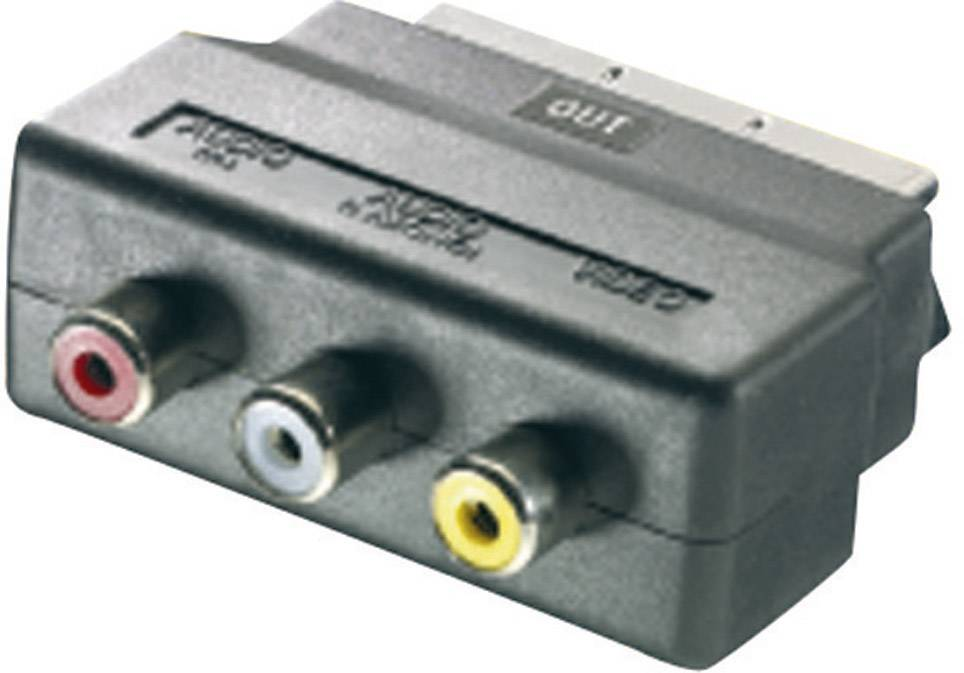 SCART / cinch adaptér SpeaKa Professional SP-1300844, čierna