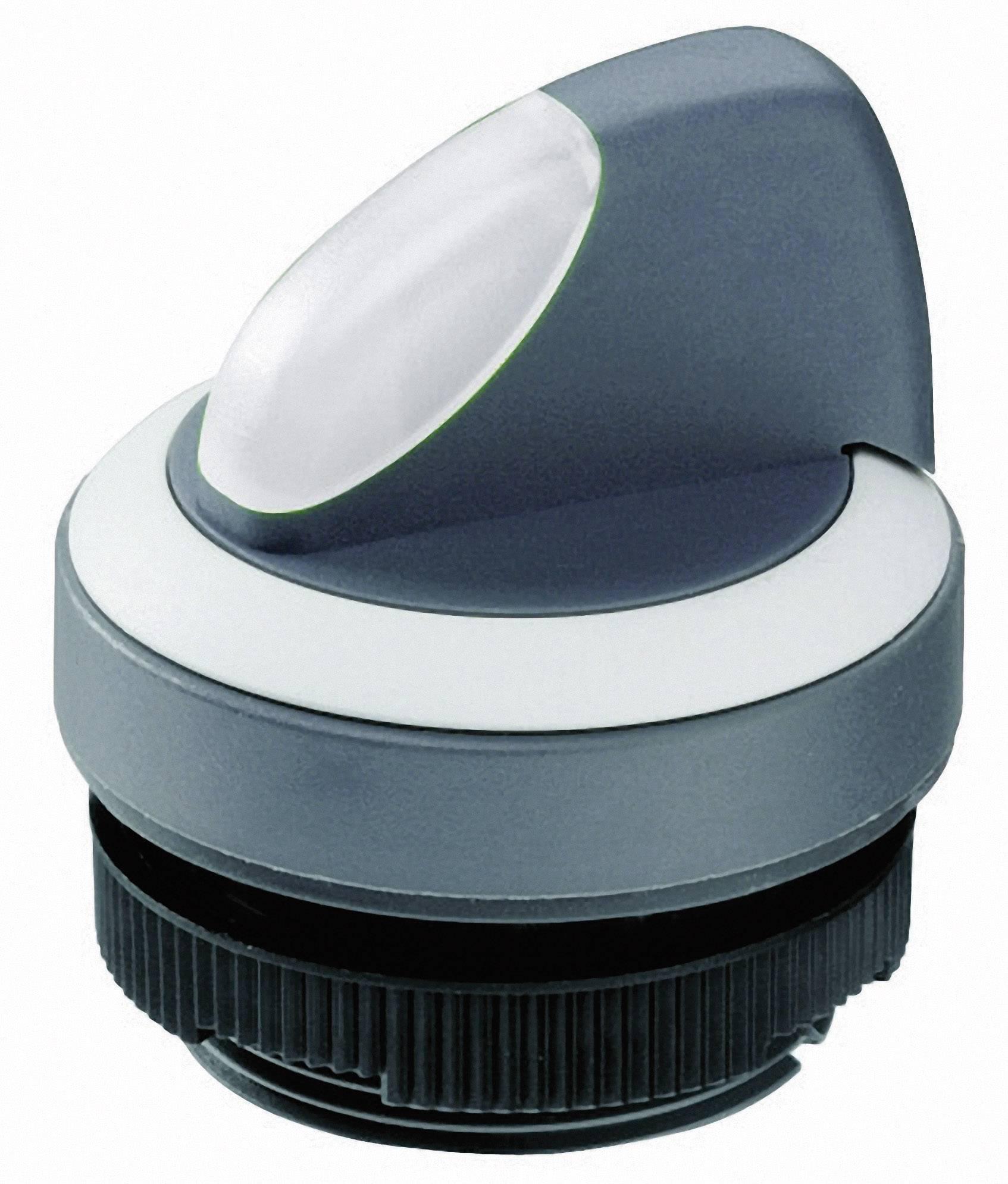 Otočný přepínač RAFI 1302721022200, 1x 90 °, 22,3 mm, černá