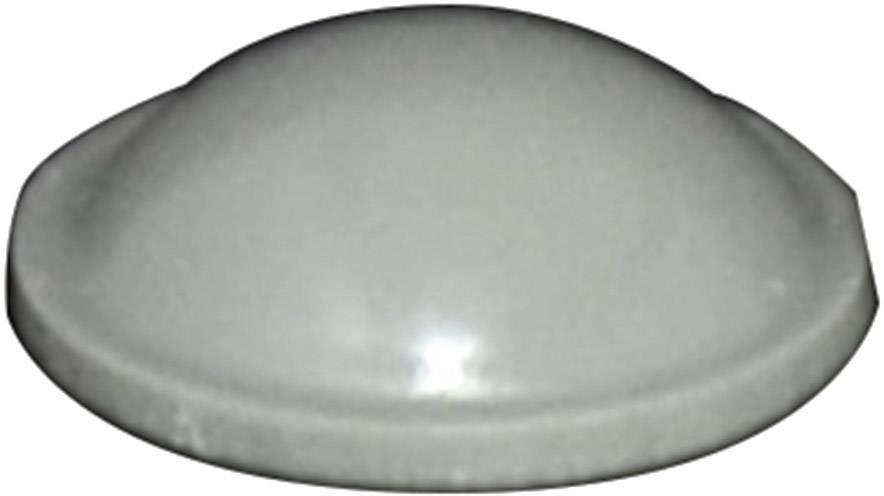 Podstavná nôžka prístrojová TOOLCRAFT PD2010G, (Ø x v) 10 mm x 3.1 mm, sivá, 1 ks