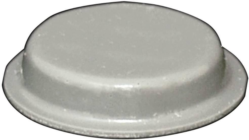Podstavná nôžka prístrojová TOOLCRAFT PD2024G, (Ø x v) 19 mm x 4 mm, sivá, 1 ks