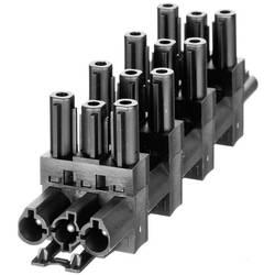 Síťový konektor 1x vstup / 5x výstup Adels AC166GVT 6/3 MIT VS. (167163V4), černá