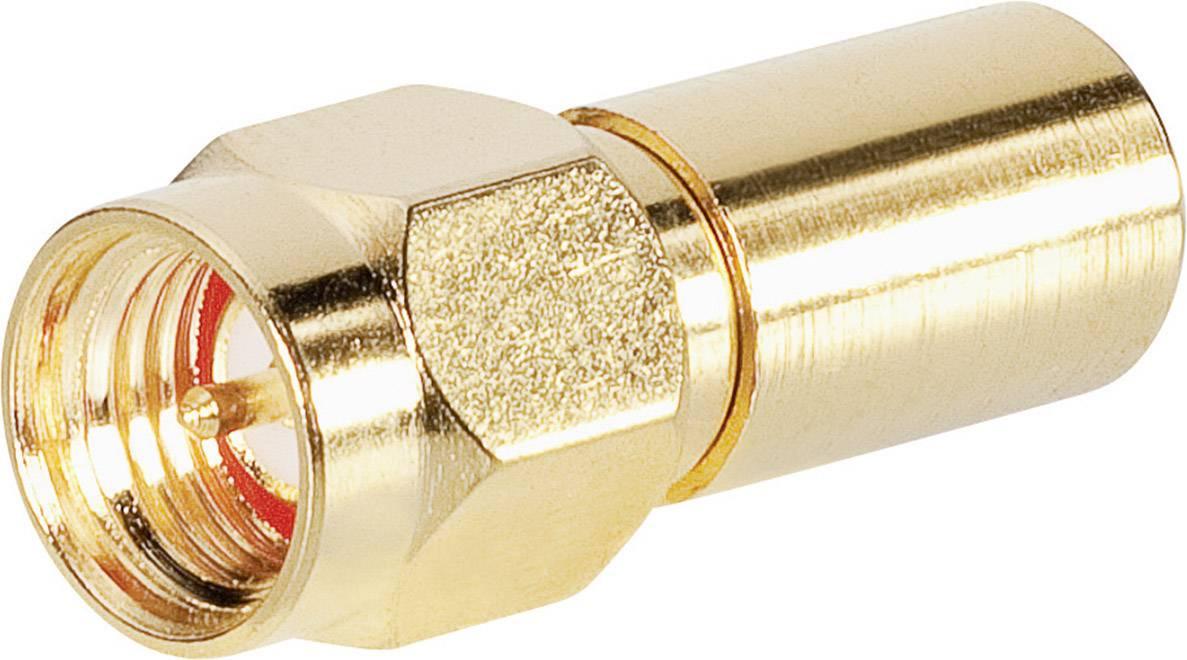 Zakončovací odpor BKL Electronic 0409055, strieborná, 1 ks