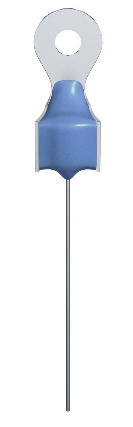 PTC termistor Epcos B59901-D60-A40, 100 Ohm, 1 ks