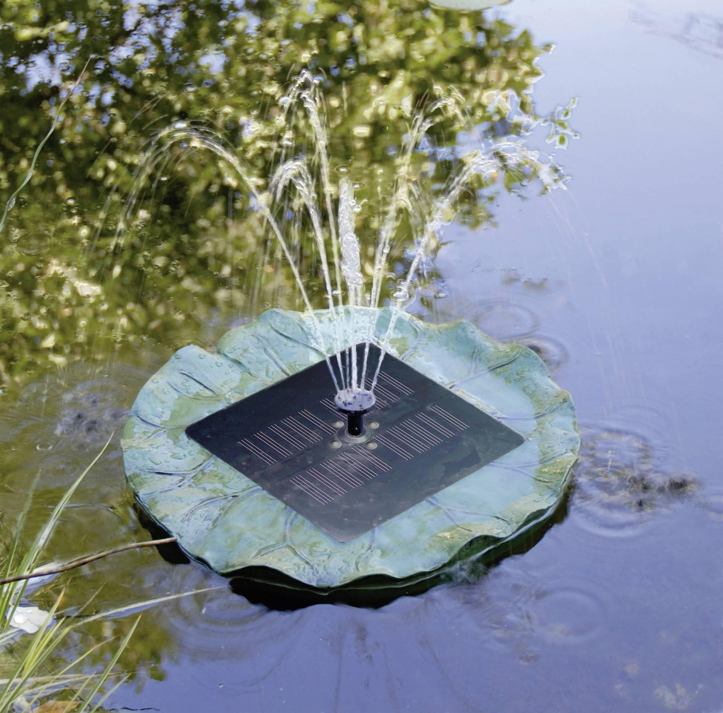 Jak pečovat o zahradní jezírko