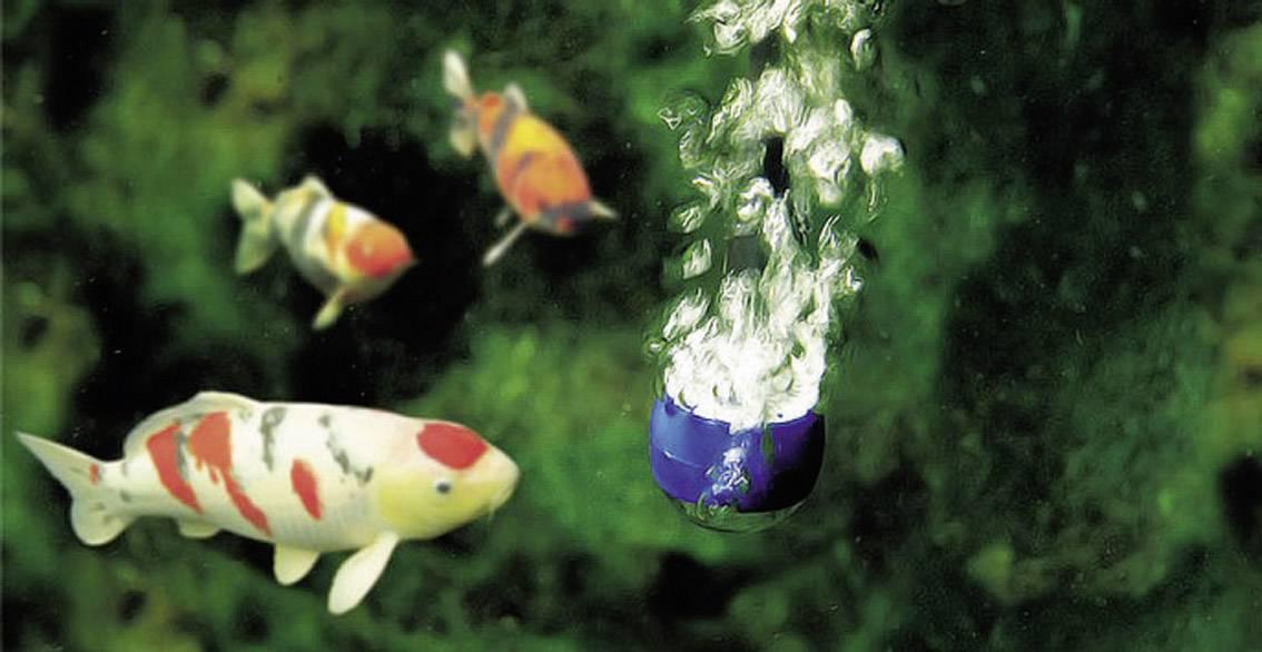 Prevzdušňovače pre záhradné jazierka