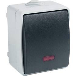 Vypínač s kontrolkou GAO Standard 9876, 10 A, 230 V/AC, šedá