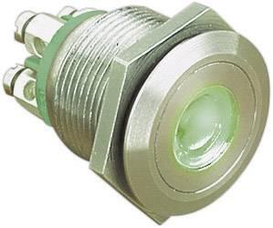 Stláčacie tlačidlo s ochranou pred vandalmi Bulgin MPI001/TERM/GN, 24 V/DC, 0.05 A, nerezová oceľ, 1 ks