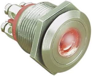 Stláčacie tlačidlo s ochranou pred vandalmi Bulgin MPI001/TERM/RD, 24 V/DC, 0.05 A, nerezová oceľ, 1 ks