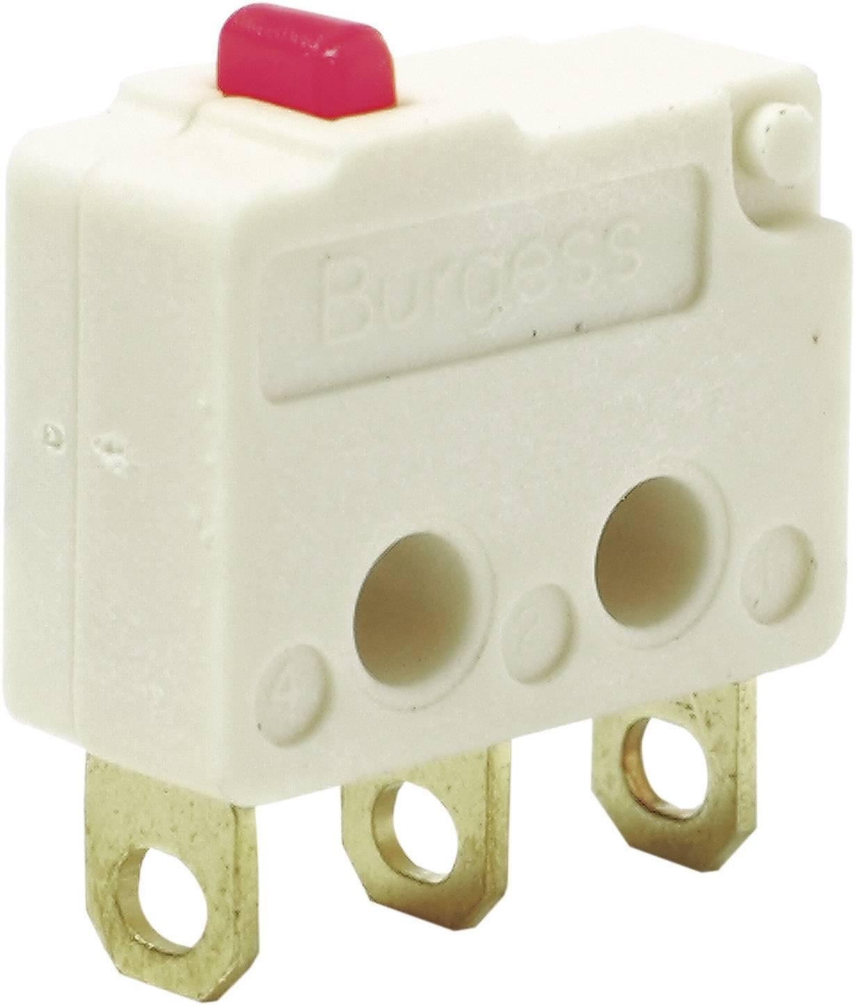 Mikrospínač Burgess F4T7YCUL, 250 V/AC, 5 A, IP40