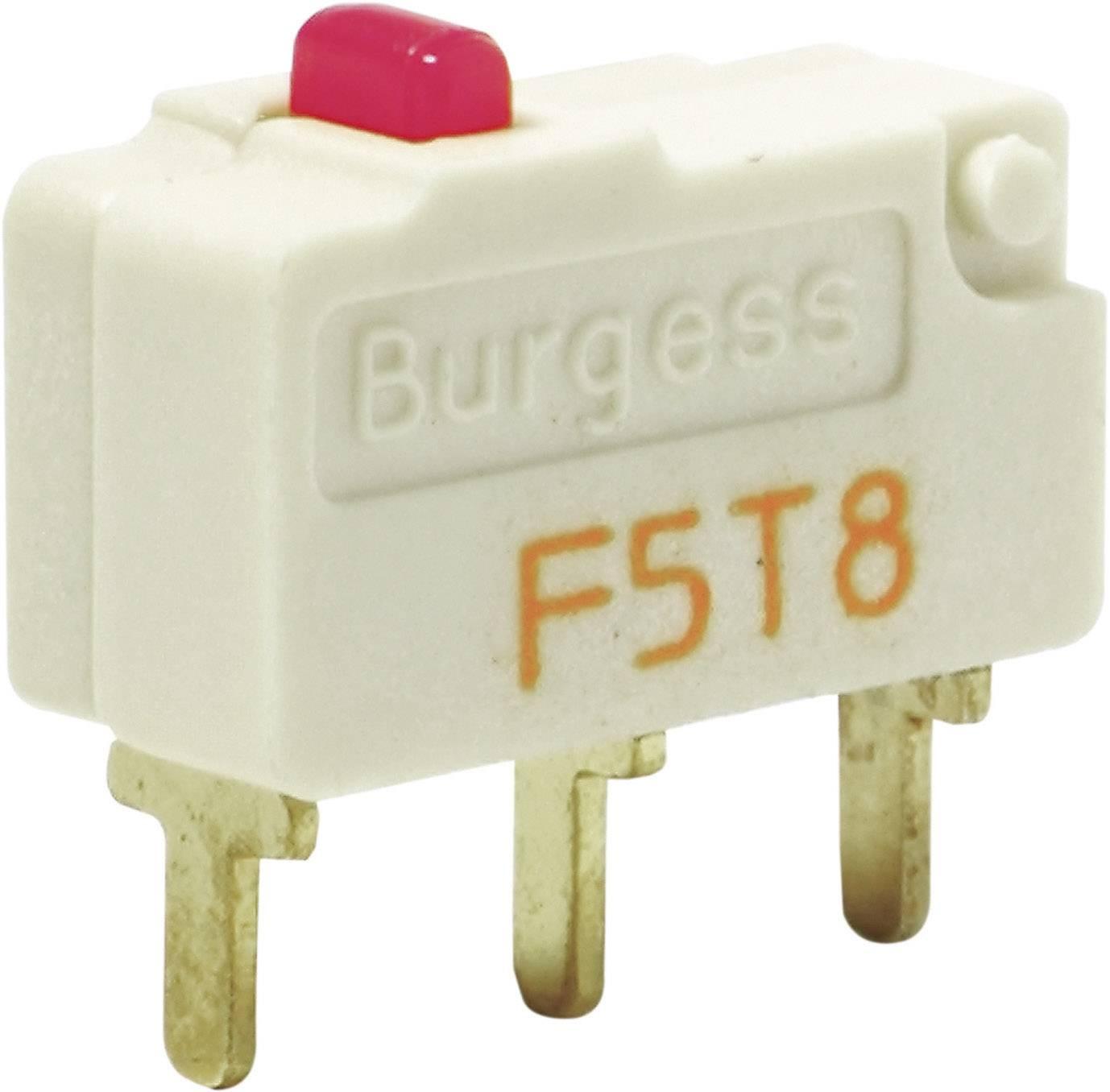 Mikrospínač Burgess F5T8YCUL, 250 V/AC, 5 A, IP40