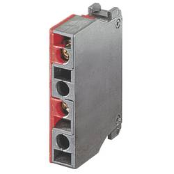 Spínací kontaktní prvek RAFI 5.00.100.143/0000, 1 rozpínací kontakt, 1 spínací kontakt, bez aretace, 250 V/AC, 10 ks